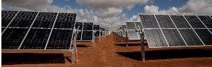 bomen-solar-farm-300x95